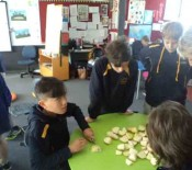 2015 HangiPrep Room One Chopping Hangi June 2015